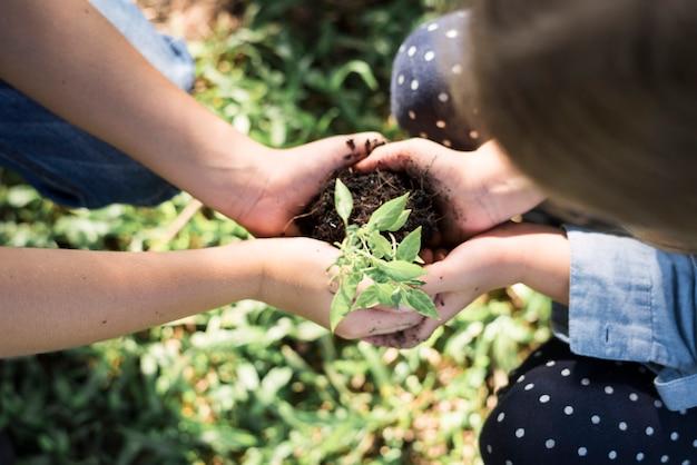 Famille plantant un nouvel arbre pour l'avenir