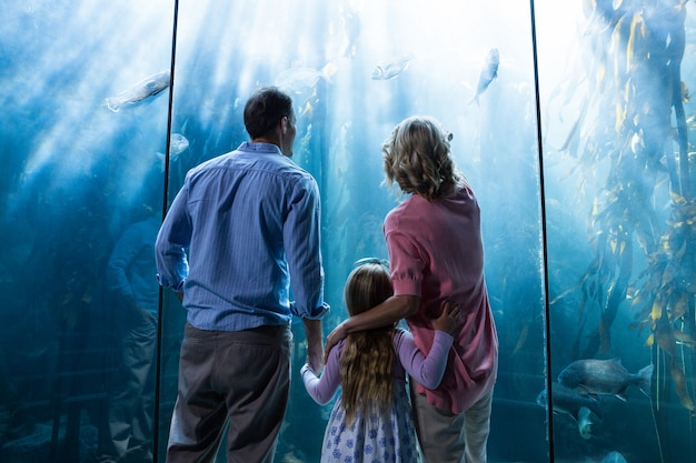 Famille regardant un aquarium