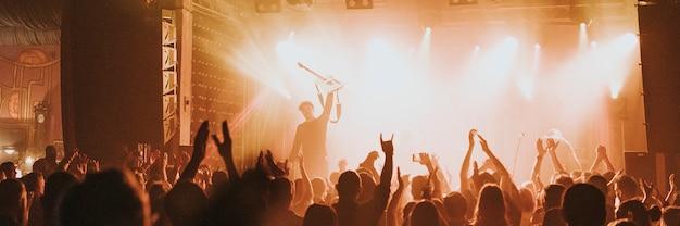 Fans acclamant dans un concert