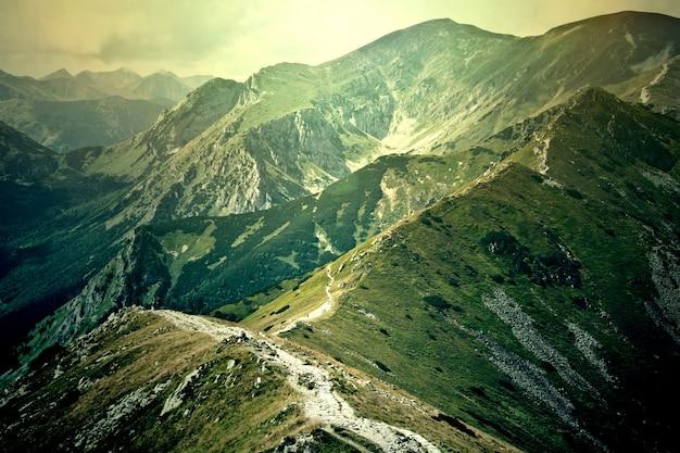 Fantastique et coloré paysage nature