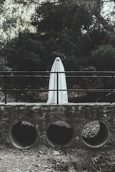 Fantôme debout sur le pont dans le parc