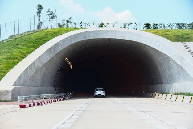 Faune traversant sur autoroute dans la route forestière tunnel vitesse voiture sur la rue