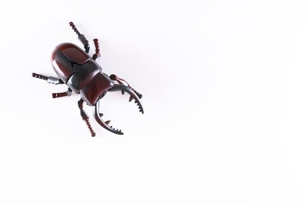 Faux scarabée en plastique sur fond blanc
