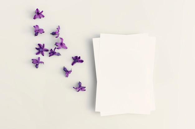 Félicitations blancs ou invitation avec dispersion de fleurs de jacinthe et d'ombres dures