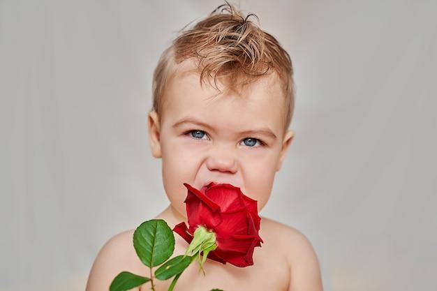 Félicitations du bébé pour la saint valentin.