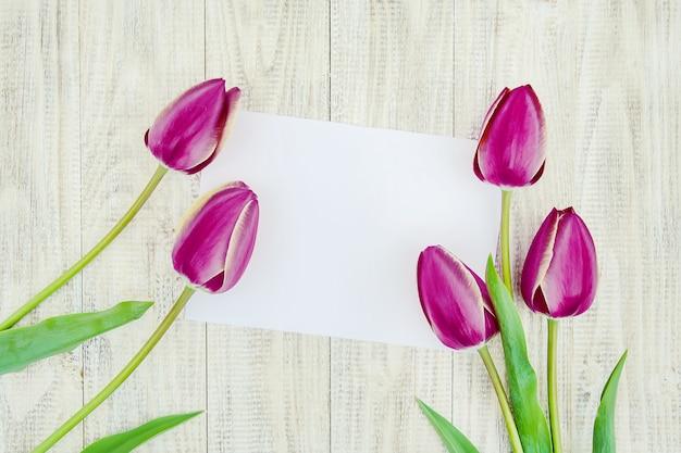 Félicitations et tulipes sur un fond clair. mise au point sélective.