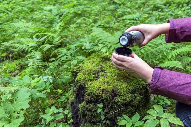 Female hands holding thermos en acier inoxydable avec verre de thé sur souche dans la forêt de conifères