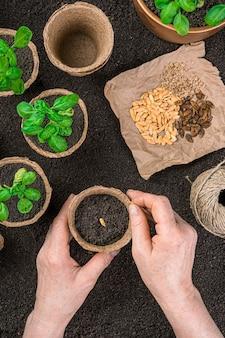 Une femme adulte plante des graines dans des pots de tourbe dans le contexte de semis et de graines. vue de dessus, verticale.