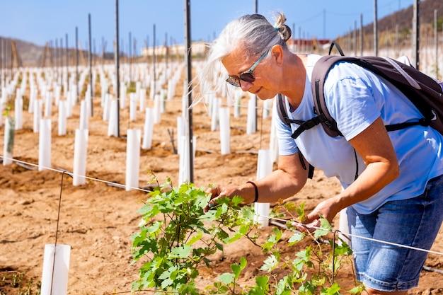 Une femme âgée contrôle les pousses du nouveau vignoble souriant fiers retraités actifs