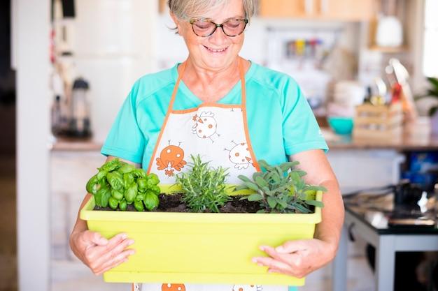 Femme âgée montrant ses plantes avec beaucoup de bonheur à la maison - mature avec des lunettes à l'intérieur pendant qu'elle tient trois plantes - femme de race blanche