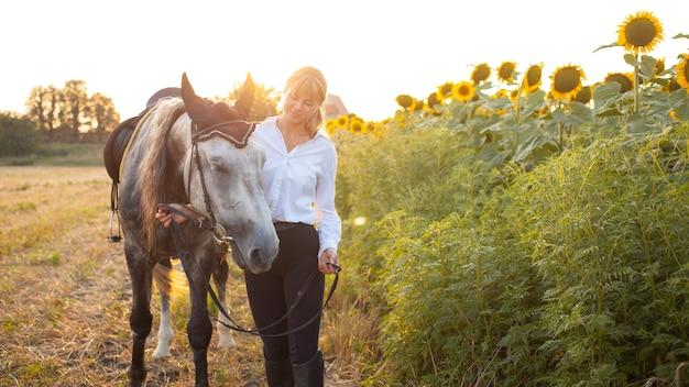 Une femme aime un cheval. amour et amitié pour l'animal, soins. beau champ au coucher du soleil, tournesols. sport équestre, dressage, marche, location et vente, munitions. vacances en plein air, tourisme