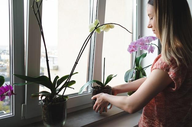 Femme, arrangement, fleurs, maison