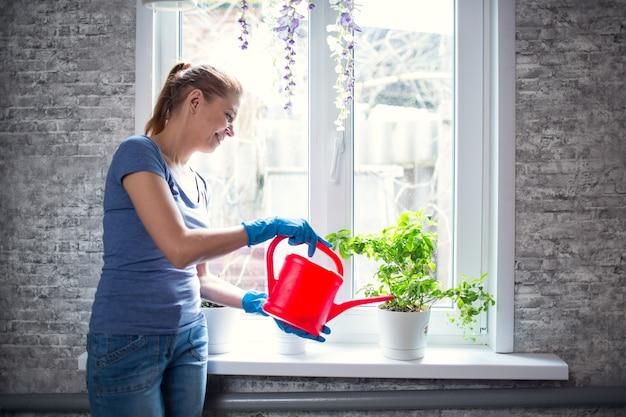 Femme arrosant des fleurs à la maison sur la fenêtre