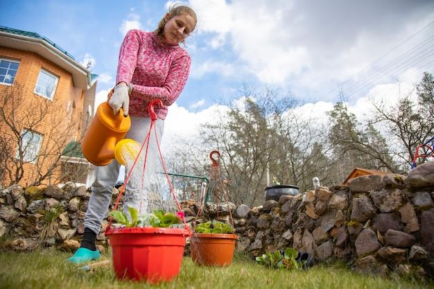 Femme arrosant des fleurs en pot d'un arrosoir de jardin dans la cour d'une maison au printemps. concept de bricolage