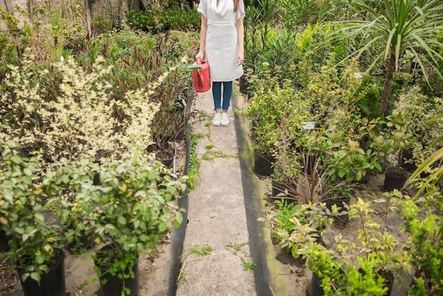 Femme avec arrosoir debout dans une serre entourée de diverses plantes