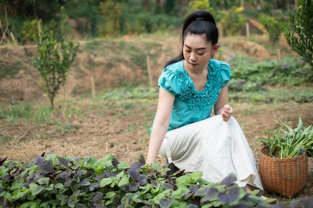 Femme asiatique dans son potager