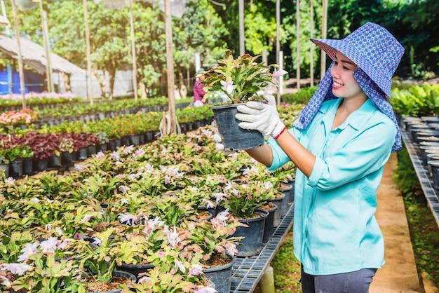 Femme asiatique travailleur heureux avec la plantation de fleurs en prenant soin de fleurs en serre.