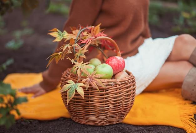 Femme assise sur la couverture jaune avec un panier rempli de pommes mûres dans un jardin