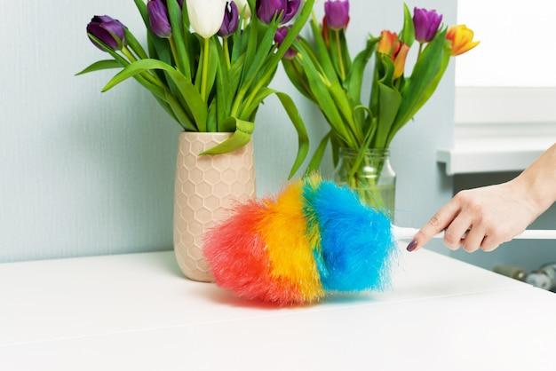 Femme au foyer essuie la poussière avec une brosse à poussière lors du nettoyage de printemps à la maison. les tâches ménagères et l'entretien ménager