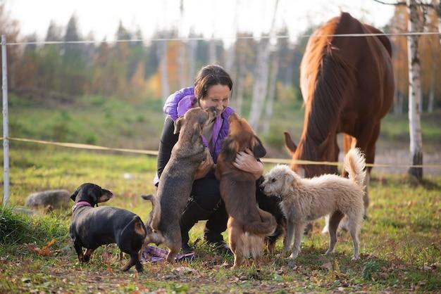 Une femme avec beaucoup de chiens dans un enclos de chevaux dans une ferme