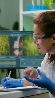 Femme biologiste écrivant une expertise médicale tout en tenant une boîte de pétri avec de la viande de bœuf végétalienne dans les mains travaillant dans un laboratoire de microbiologie