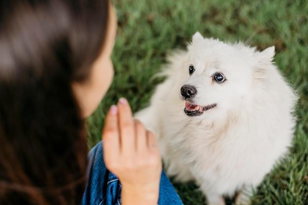 Femme, caresser, adorable, chien