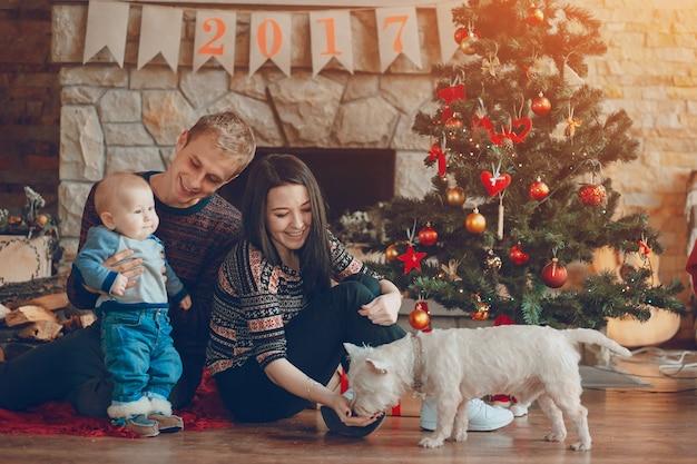 Femme caresser le chien pendant que son mari tient le bébé dans ses bras sur noël