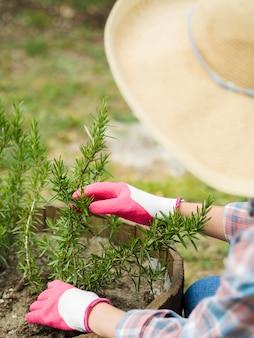 Femme, à, chapeau, prendre soin, de, elle, jardin