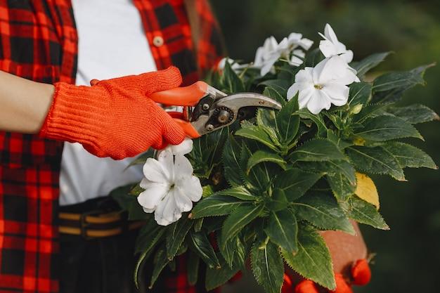 Femme en chemise rouge. travailleur avec des pots de fleurs. fille avec des plantes
