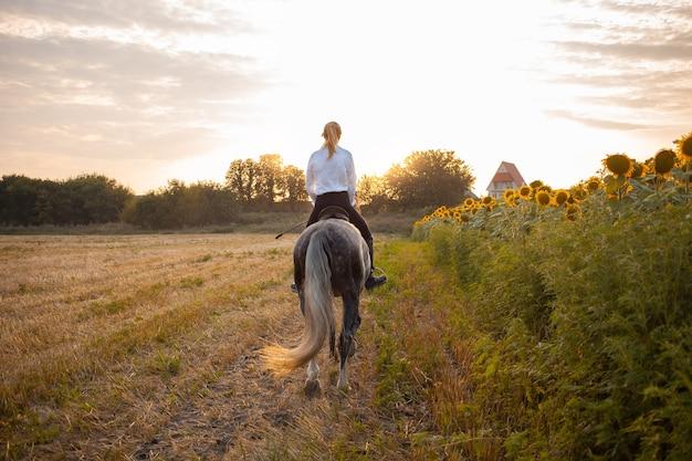 Une femme chevauche un champ à cheval au coucher du soleil. entraînement sportif, équestre, pédestre, location et vente de chevaux, ranch, munitions. beau fond. amour et amitié à l'animal, soins. liberté