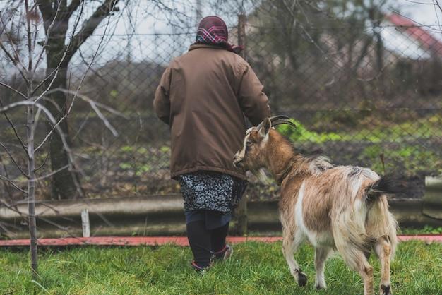 Femme avec une chèvre à la ferme