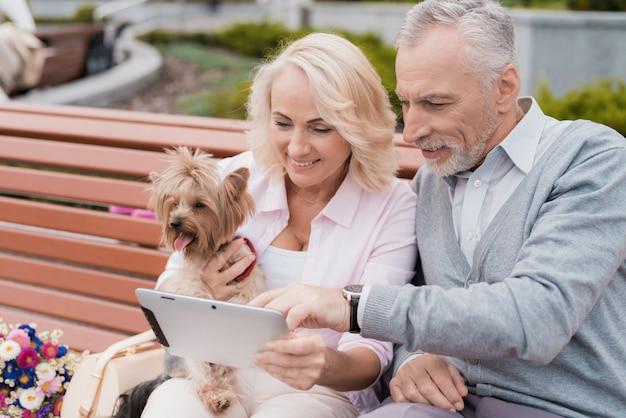 Femme a un chien, l'homme tient un ordinateur portable sur ses genoux.