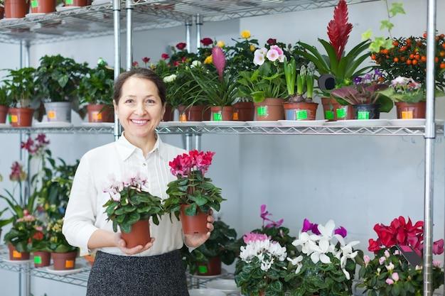 Femme choisit cyclamen au magasin de fleurs