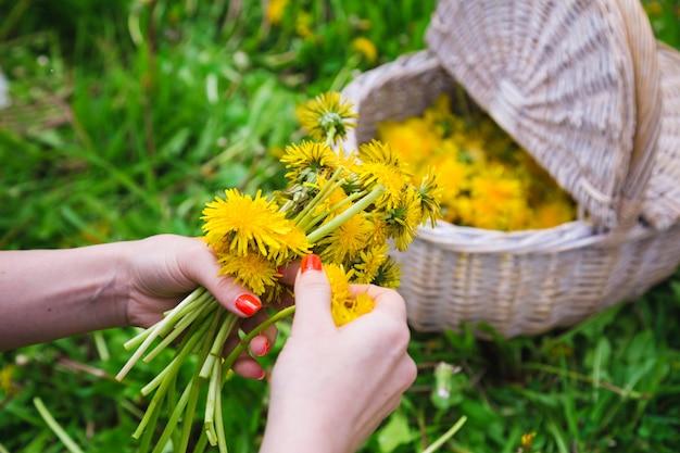 Femme cueillant des fleurs jaunes