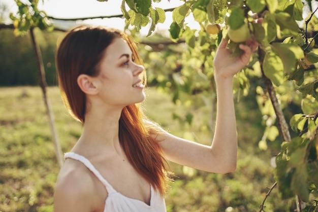 Femme cueille la pomme de l'arbre nature soleil se bouchent
