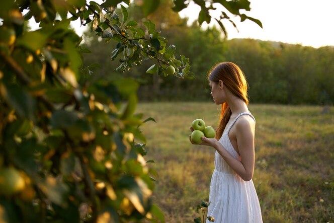 Femme cueille des pommes dans le jardin et robe blanche herbe verte d'été