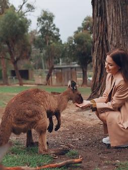 Femme dans la réserve joue avec un kangourou