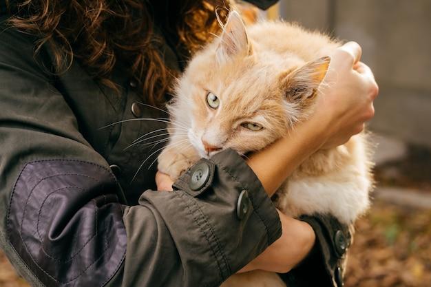 Femme dans une veste verte est titulaire d'un chat rouge moelleux à l'extérieur en automne gros plan