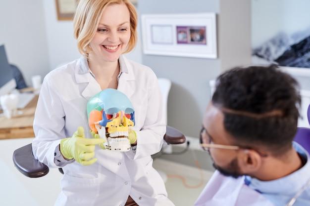 Femme dentiste expliquant la structure des dents