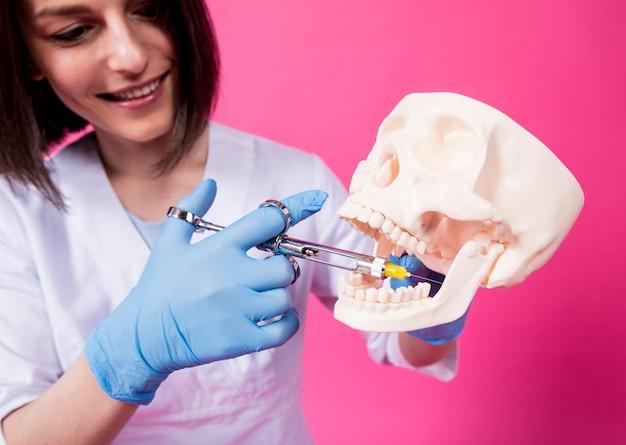 Une femme dentiste avec une seringue de covoiturage injecte un anesthésique dans la gencive du crâne artificiel