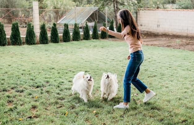 Femme donnant des friandises aux chiens mignons