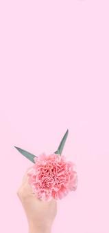 Femme donnant des oeillets bouquet isolé sur fond rose vif,