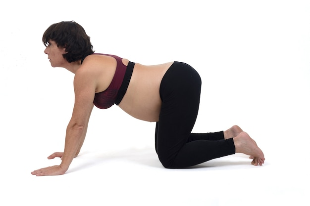Femme enceinte faisant des exercices au sol sur fond blanc, pose de chat