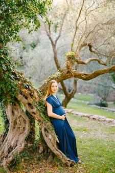 Femme enceinte souriante dans une longue robe se dresse avec son dos contre un énorme arbre vert