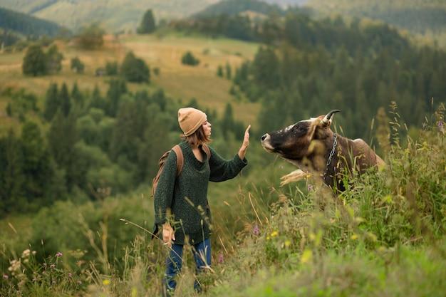 Femme essayant de s'approcher d'une vache