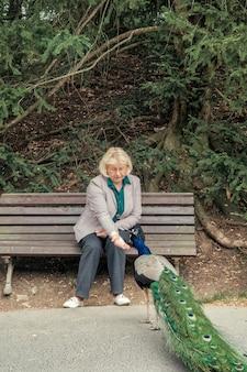 Femme est assise sur un banc dans le parc et nourrit un paon mignon