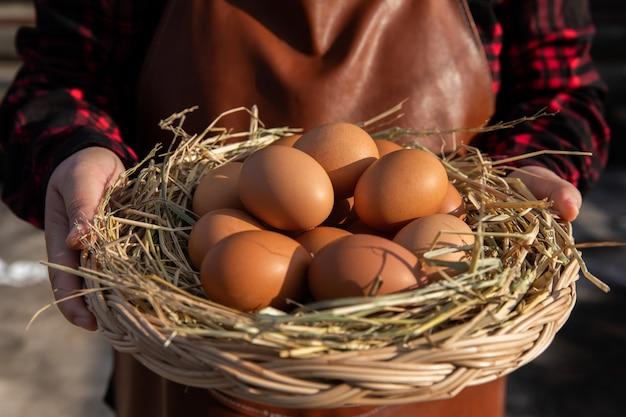 Une femme est titulaire d'un panier en rotin avec des œufs frais.