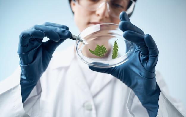 Femme examinant des pinces à épiler plante médecine transparente verres laboratoire de botanique de biologie