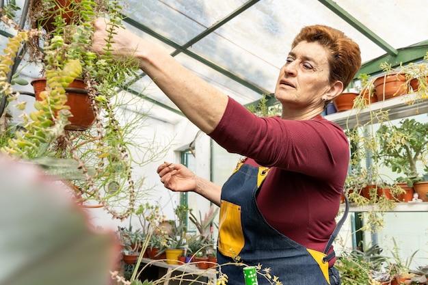 Femme examinant ses plantes vertes