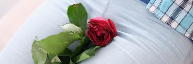 La femme a fané la rose dans l'entrejambe entre les jambes
